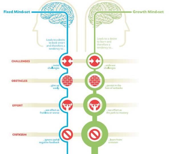 atitudine vs IQ